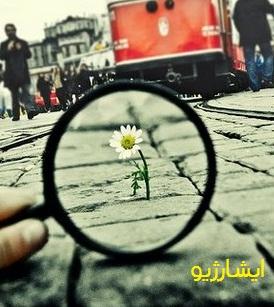 امید و زندگی